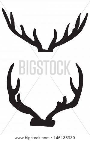 Deer horns silhouette horn deer horns mammal