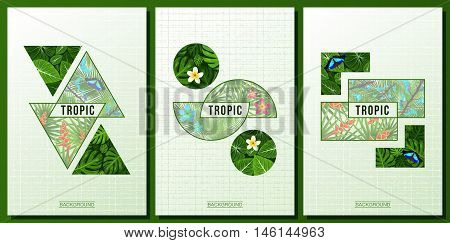 Three modern tropical poster jungle leaves plumeria tropical flowers. Butterfly. Geometric trendy background. Vector illustration