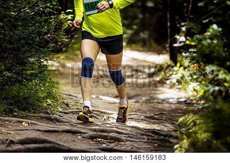 athlete marathon runner running in woods exposed roots of trees knees in kneepads