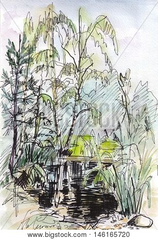 The instant sketch pond and tress watercolor