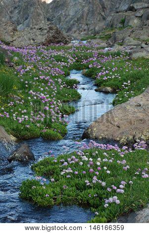 Doğa insana huzur ve mutluluk verir  o anlardan bir an