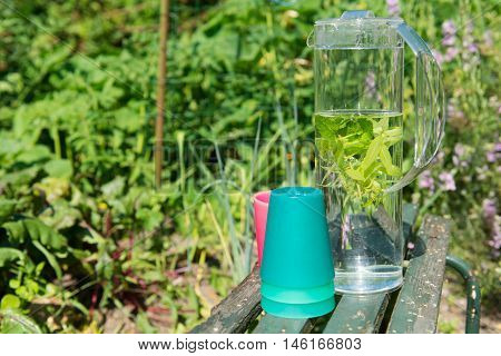 Water with mint and lemon balm in the garden