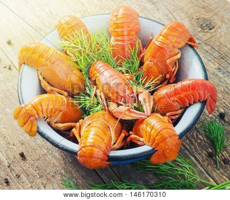 crawfish on wooden background in a plate toning
