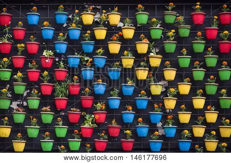 Beautiful colorful composition of spring flowers in the bright flower pots on the wall. Flower pattern and background. Creative flower wall. Creativity lifestyle concept.