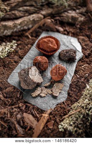 Handmade chocolates ball with truffle on black slate