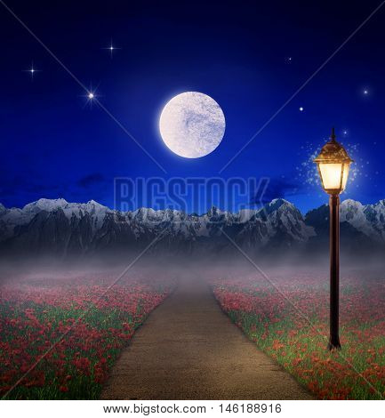 Concept of dreaming. Path to wonderful land. The road passing through a field of flowers in the mountains with the full moon.