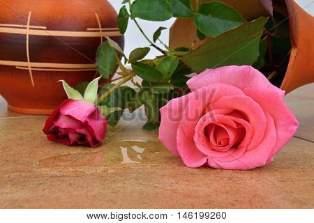 Capsize flower vase with roses. Water leaked out of a vase. Vase on ceramic tiles.