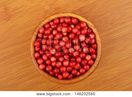 Lingonberry (vaccinium Vitis-idaea)