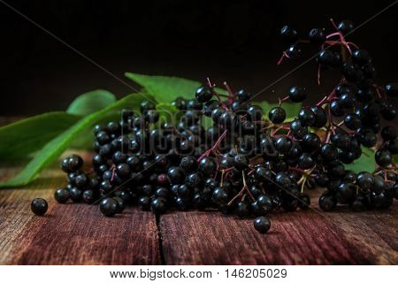 black elderberries (Sambucus nigra) with leaves on a dark wooden background with copy space close up shot with selected soft focus and a very narrow depth of field