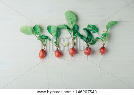 Row of tiny red radish with green leaves on white background. An organic, healthy vegetables.