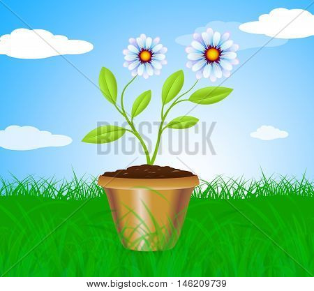 Potted Plant Means Cultivation Gardening And Plants