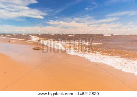 Windy Holiday Shore Landscape