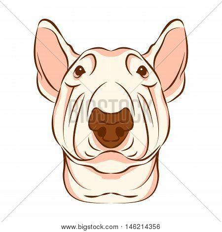 bull terrier dog head face vector illustration