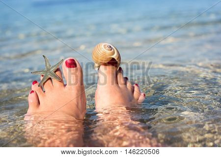 Female feet on the beach with starfish and shell
