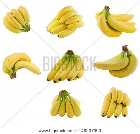 collection of    bananas cluster. Isolated on white background