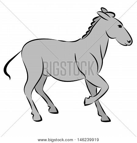donkey gray line drawing vector illustration side  view