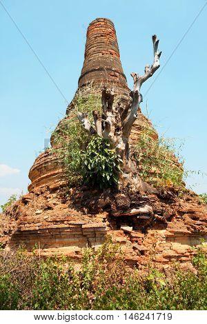 Stupas in Sagar - 108 stupas from the 16-17 th centuries near Lake Inle Myanmar