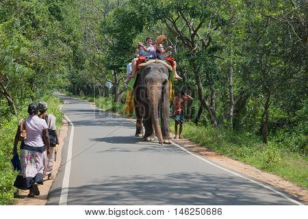 SIGIRIYA, SRI LANKA - MARCH 16, 2015: Walk an elephant in the vicinity of Sigiriya. Walk an elephant in the vicinity of Sigiriya. Tourist landmark of the Sri Lanka