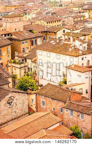 Top view on the old buildings in the old town of Lucca in Italy