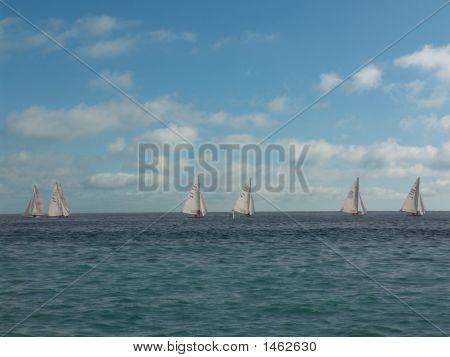 Sailers