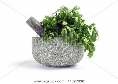 Granit pestle and mortar with coriander.
