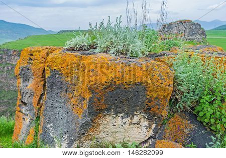 The colorful rocks with lichen moss grass and wildflowers Saro Georgia.