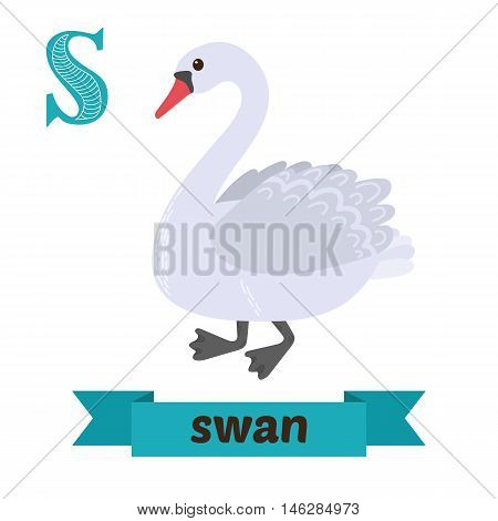 Swan. S Letter. Cute Children Animal Alphabet In Vector. Funny Cartoon Animals
