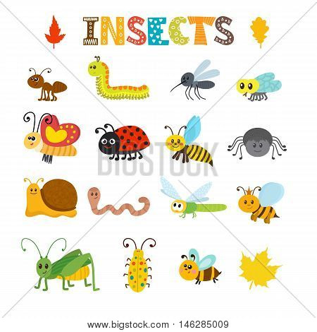 Vector Set Of Cartoon Insects. Colorful Bugs Collection