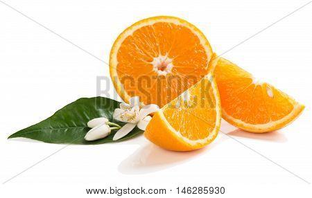 Slices of orange fruit blossom and leaf of orange tree isolated on a white background.