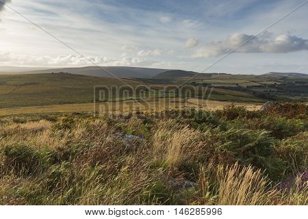 An evening shot from Rippon Tor on Dartmoor took with a slow shutter speed to emphasize the blustery wind in the grasses and plants.