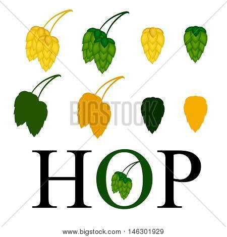 Vector illustration hops. Green and yellow icon hops.