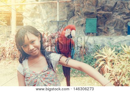 Girl And Macaw