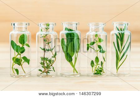 The Bottle Of Essential Oil With Herbs Rosemary, Oregano, Sage, Thyme And Lemon Thyme Set Up On Wood