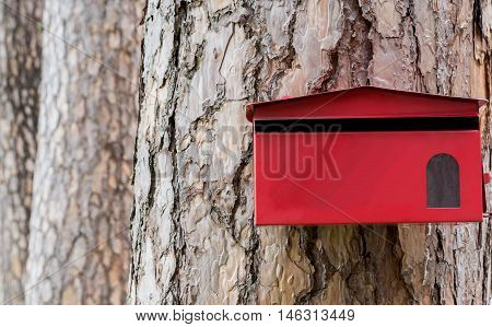 red mailbox hanging on tree texture background