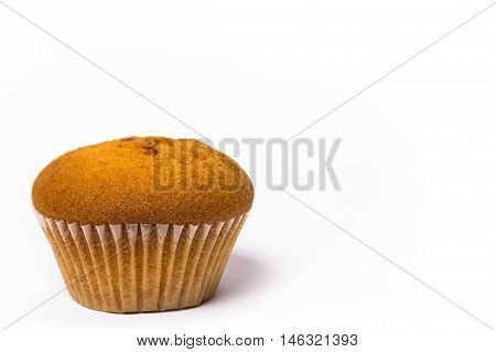 Closeup of a Magdalena Typical Spanish Plain Muffin. Sweet Food or Dessert. One Fresh Baked Double Chip Muffin Isolated on White Background in American Style. Irresistible Tasty Cake