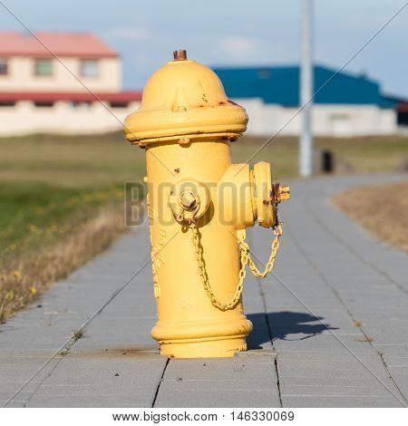 Yellow Fire Hydrant On A City Sidewalk