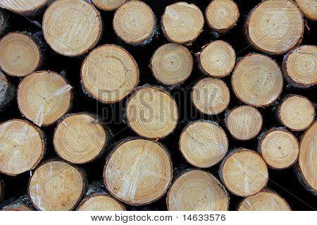 Cut Wooden Logs Background