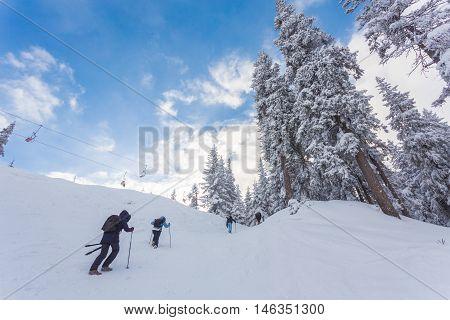 People play ski in ski resort in winter season