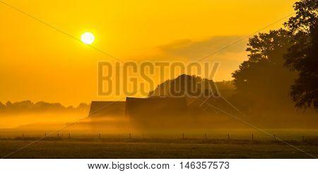 Orange Farmyard Sunrise