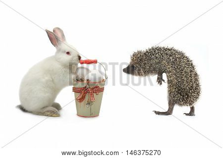 rabbit and hedgehog near a bucket with easter eggs
