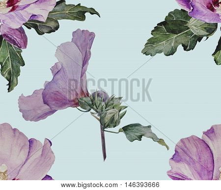 Pattern from hibiscus flowers on a pale blue background