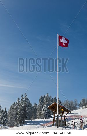 Swiss Flag In The Wind