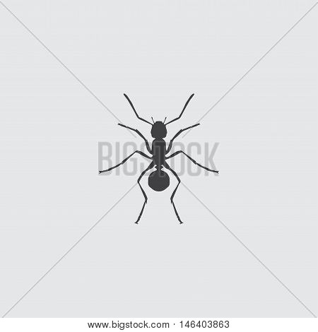 Ant Icon in a flat design in black color. Vector illustration eps10