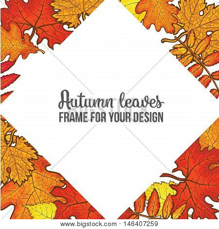 rhombus frame with fall leaves, sketch style vector illustration isolated on white background. Red, yellow and orange maple, aspen, oak and rowan autumn leaves as a rhombus frame