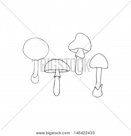 Hand drawn vector illustration of poisonous mushrooms - Amanita muscaria Amanita phalloides and Amanita pantherina. Isolated on white background.