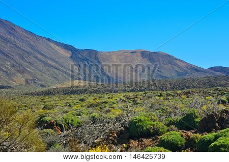 View Of Mountains, Tenerife, Canary Islands, Spain