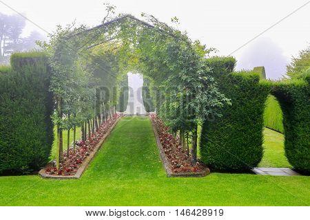 Dunedin, New Zealand - Febr 10, 2015: Foggy Morning In The Garden Of Larnach Castle.