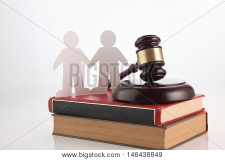 people, homosexuality, same-sex marriage and love concept with gavel hammer and law book