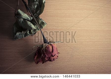Dry roses placed on a wooden table