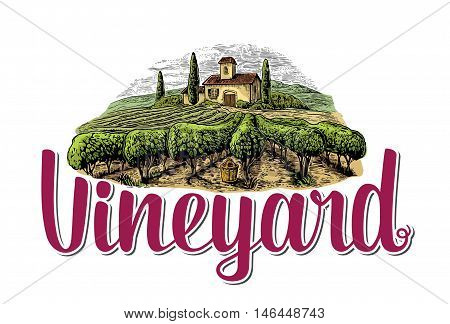 Rural landscape with villa vineyard fields and hills. Colorful white drawn vintage vector illustration for label poster.